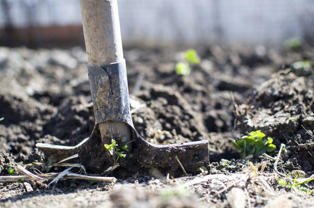 土とスコップ穴を掘る